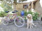 S.Ferdinando rose con bici e Dea