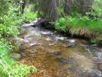 Boulder Creek below home
