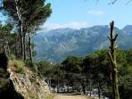 les hauteurs de Tetouan à 2 km