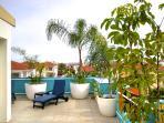 Your own tropical garden!