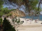 Metallia Beach