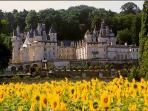 Alentours le château d'Ussé dit de la Belle au Bois Dormant