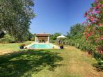 The  pool is conveniently sited near a large olive tree that provides a welcoming canopy of shade