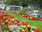 kirkcudbright in bloom