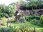 Your garden area