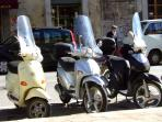 Vespa and Fiat 500 clubs often show off their machines in the high street.