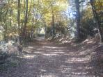 A woodland walk 1km from the gite