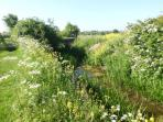 Beautiful countryside to enjoy while in Lincolnshire