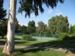 Domain grounds and tennis