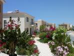 Wide avenue of pastel coloured villas