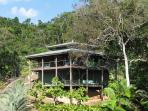 Your Home in the Rainforest