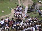 The annual cow festival