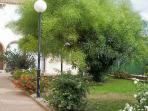 Well maintained and lit apartment gardens all year round