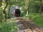 Experience the Tal-y-llyn Steam Railway