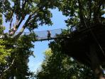 Pont de singe (15m)