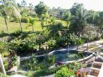 Tropical fish pond from terrace