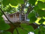 Cabane dans les arbres (15m)