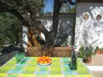 Al Fresco under the olive tree, our trees supply our own olive oil, for you to sample.