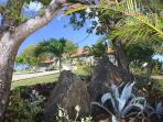 Explore the 3 acre tropical garden ...