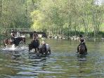 Pony trekking in the area