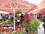 Cours Saleya in 3min walk