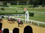 Pompadour Racecourse - 15 minutes away