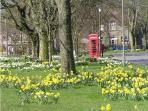 Litton village green in spring