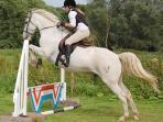 Riding lessons, hacks or activity days can be booked on site for all abilities of rider.