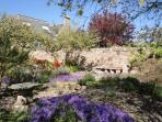 View of 'rock garden' in Spring