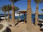 Bar, beach and mini marina near our apartment