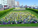 Bexhill in Bloom outside Paddlers looking towards the Sailing Club