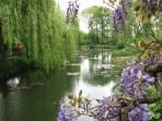 Monet 's Garden with the famous bridge & waterlilies at Giverny