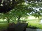 la terrasse sous le tilleul centenaire