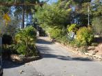 Driveway (in Autumn)