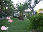 one of the beautiful garden areas on Oasis de Capistrano