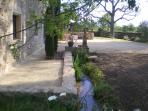 Petit ruisseau d'eau de source.