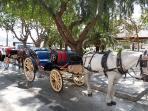 Mijas Pueblo has the best view of Costa del Sol available. Take a donkey taxi about town. A must see