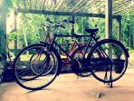 Free Bycycle to enjoy Borobudur
