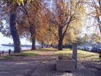 Autum ,Lakeside in Evian, Nov 2014