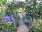 The meandering pathways and steps of the terraced garden are also a source of  kitchen herbs