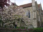 St Mary's Church, with a fantastic view of Rye if you are brave enough to walk up the tower!