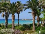 Nissi Beach Resort Garden - Five Walking Minutes Away
