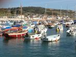 Lyme Regis Marina