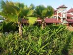 Eden Islands tropical foliage