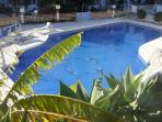 large,peaceful,sunny,clean pool with shady areas