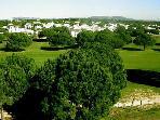 Many, many Golf courses