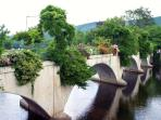 The famous Bridge of Flowers in Shelburne Falls. Seen by visitors from around the world.
