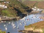 Solva Harbour (5-10 minutes walk)
