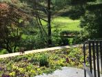 18th green of Stockbridge Golf Club