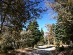 Hiking trail near house